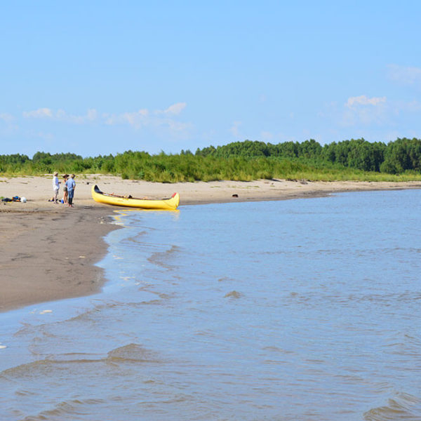 Canoeing to an island on the MS River during the Mississippi River Nature Weekend